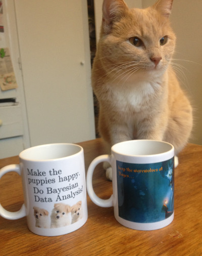 Stina the Cat with some Bayesian Cups